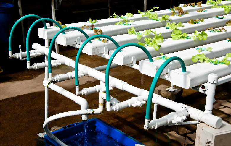 Hydroponic vegetable garden illustrating pipes and pump